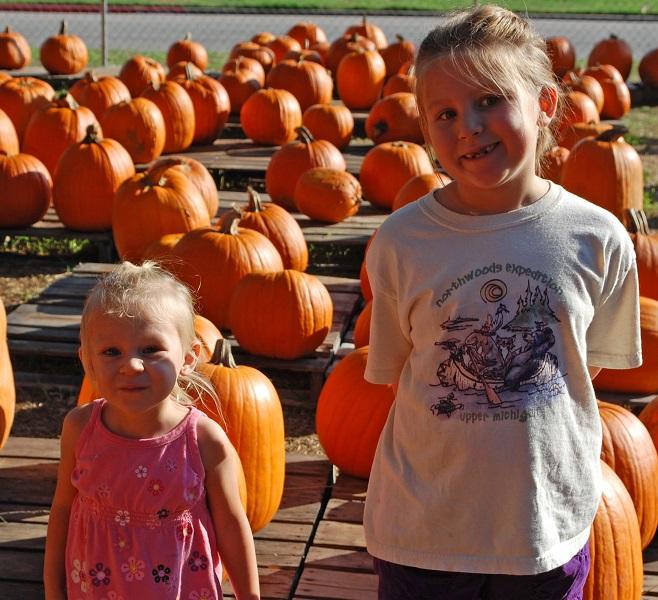 Pumpkin patch2.jpg2